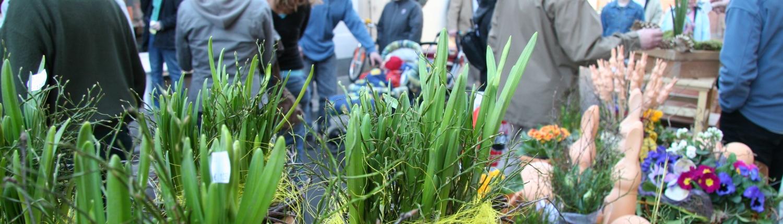 Frühlingserwachen in Kirchheimbolanden mit proKIBO e.V.